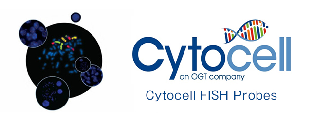 Cytocell FISHプローブ